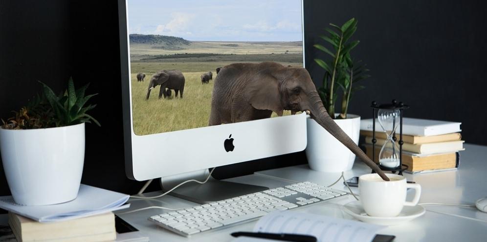 Pět důvodů, proč vám web nepřináší nové obchody